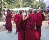 Philosophy: Buddhist Studies in India Program