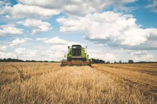 agriculture scholarships 2