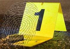 Forensic Studies UTAS