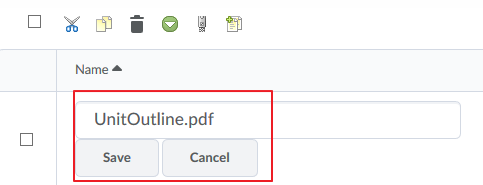 Save your renamed file