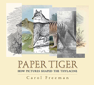 Book cover of Paper Tiger