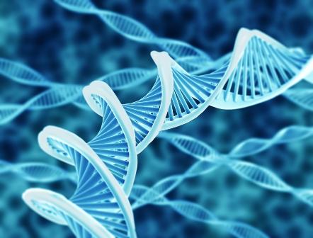 Menzies Institute public talks take a close look at cancer