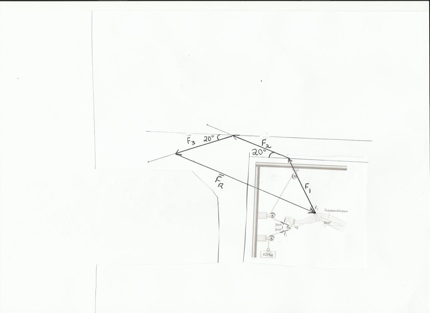 Module 9 Vectors Mathematics Pathways University Of Tasmania Force Vector Diagrams 14