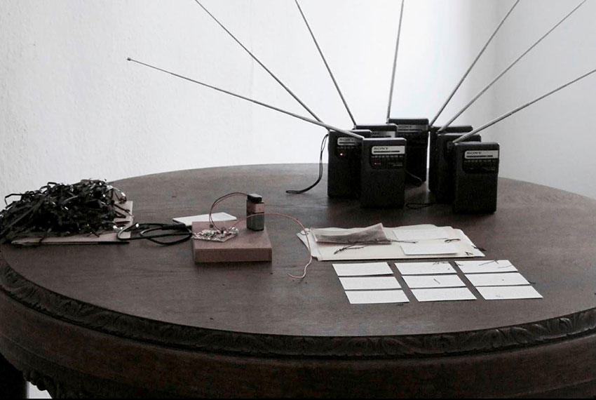 Art Forum - Sally McIntyre. Image credit: Sally Ann McIntyre, study for a data deficient species (grey ghost transmission) (2016)