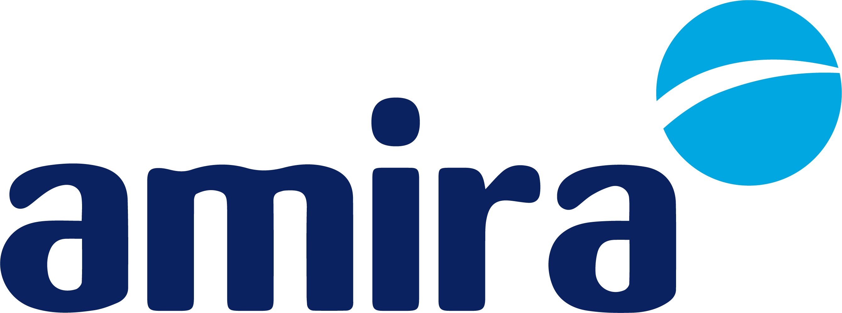 AMIRA International