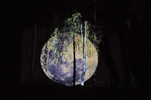 Ella Condon,Tracing Moonlight, 2016, Video projection, Plimsoll Gallery Garden