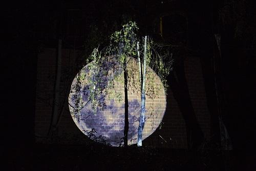 Ella Condon,Tracing Moonlight, 2016, Video projection, Plimsoll Gallery Garden