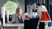 Alumni explainer: the science behind sea sparkles