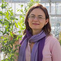 Dr Eloise Foo