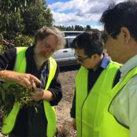 The Northeast Forestry University visit to UTAS