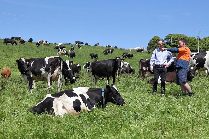 TIA Dairy - James and Brad