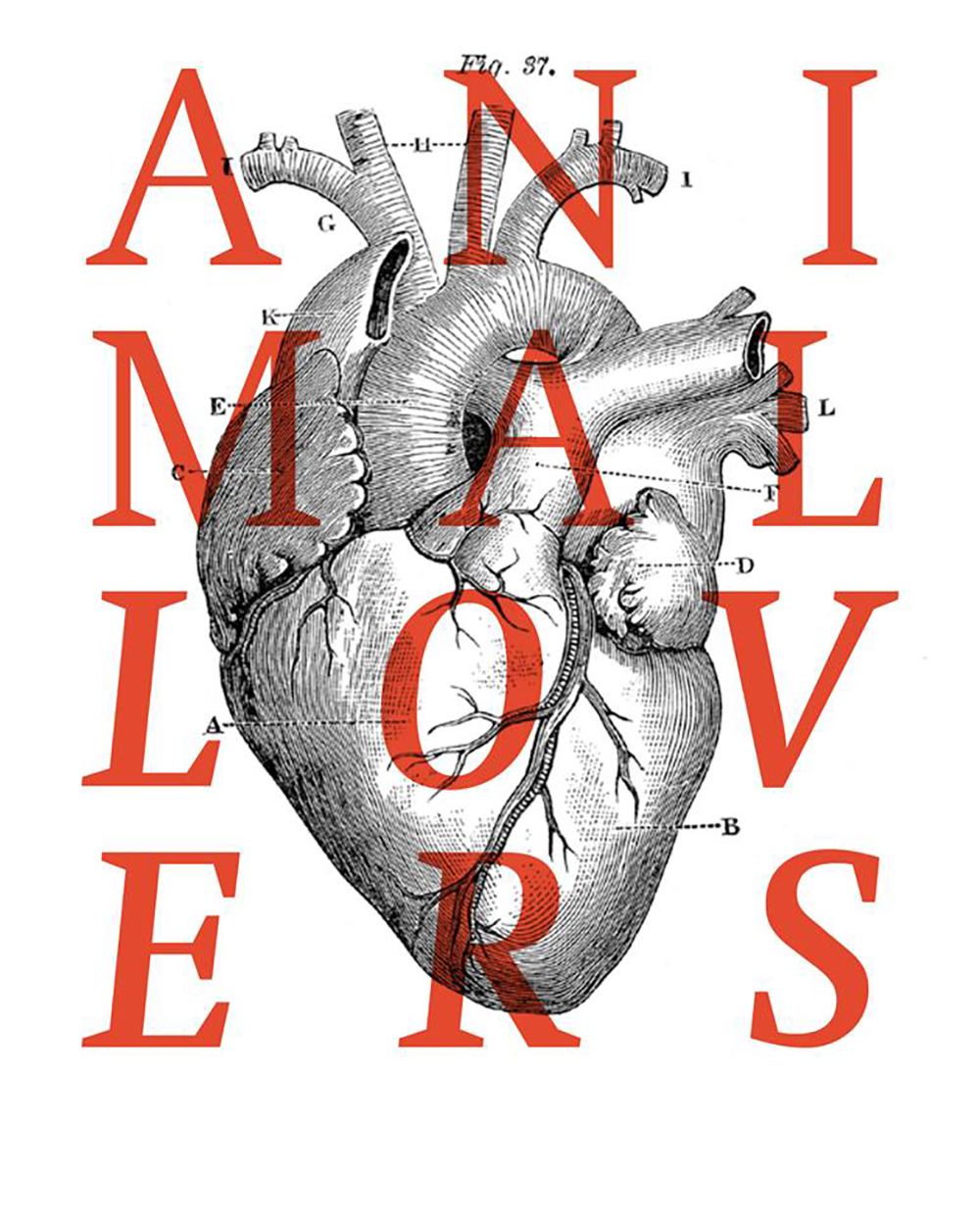 Image Credit: ANIMAL LOVERS Cover (2016 by Olivier Arcioli)
