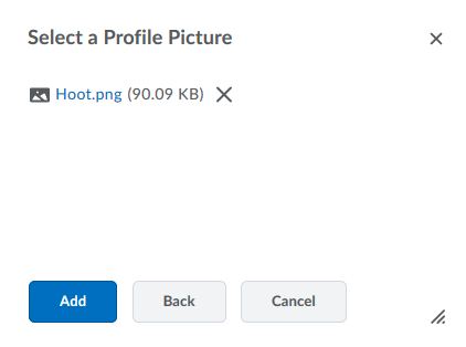 Select a profile picture