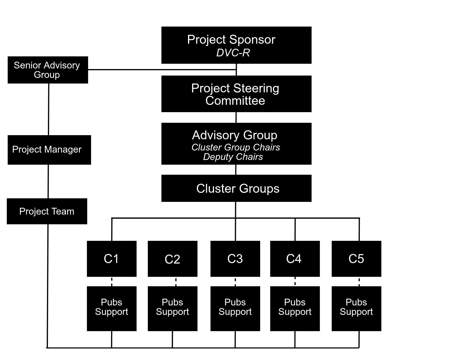 Governance Structure Schematic