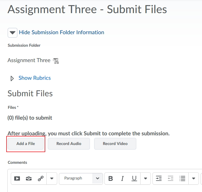 Screenshot of the Submit Files - Assignment name page.